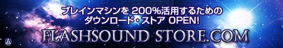 flashstore-banner580px.jpg